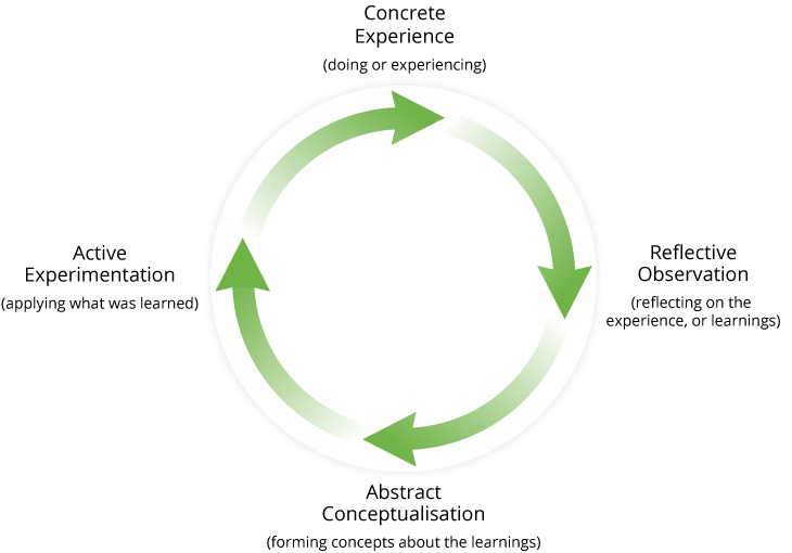 The Experiential Learning Cycle